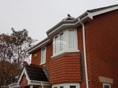 Guttering and fascia replacement Demesne Furze, Oxford